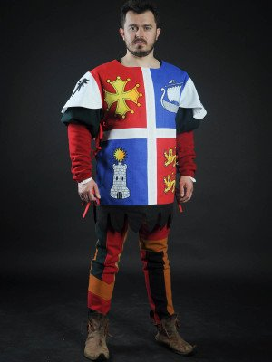 Quarter colored tabard with boat, tower and lions Body