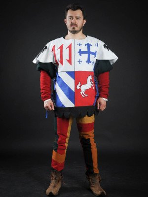 Quarter colored tabard with unicorn Body