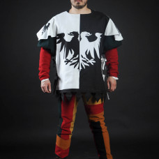 Half-colored tabard with black and white half-eagles  image-1