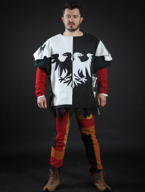 Half-colored tabard with black and white half-eagles  Body