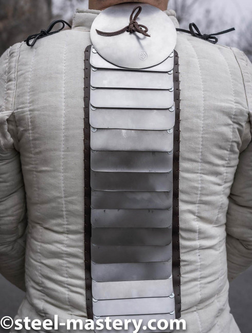 Additional back protection Scale body armour and plates