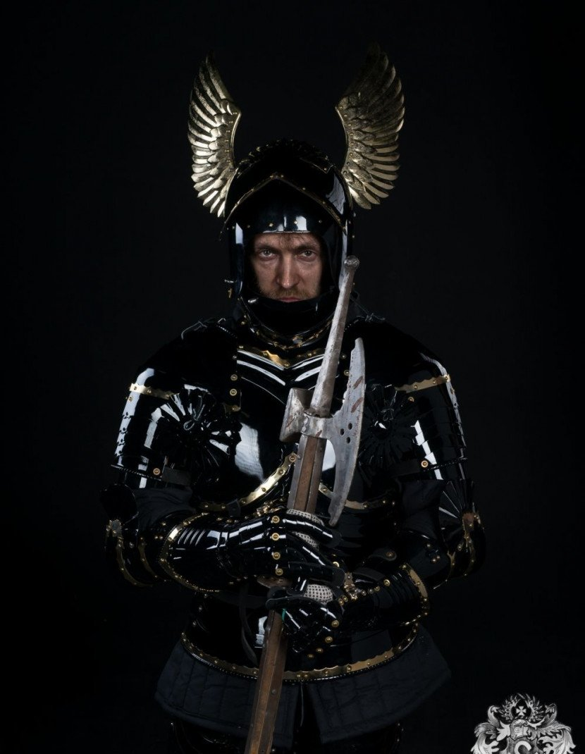 Full-plate Gothic armor, XV century photo made by Steel-mastery.com