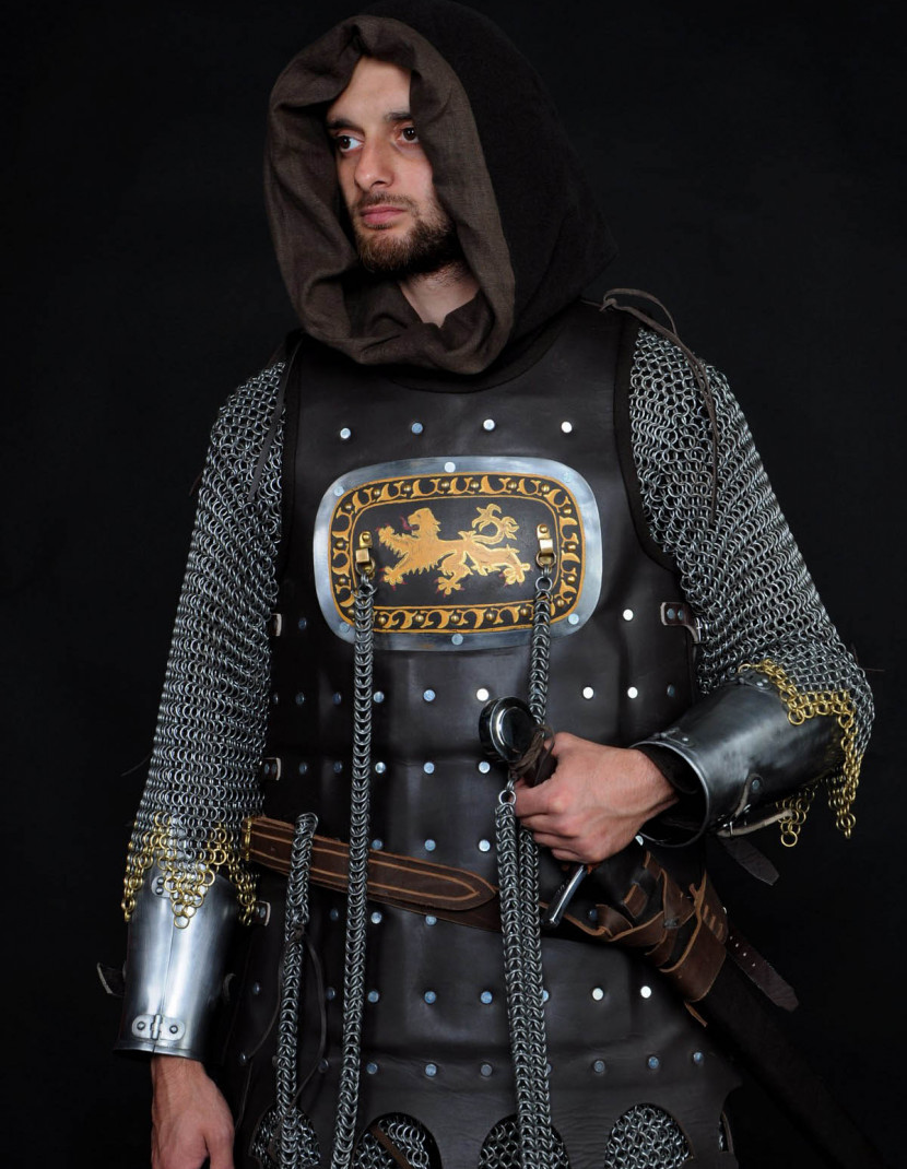 13 century European armour in colours of the English royal house photo made by Steel-mastery.com