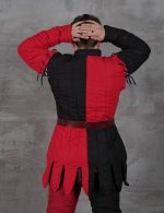 Gambeson, 4-colored gambeson, gambeson by Steel Mastery